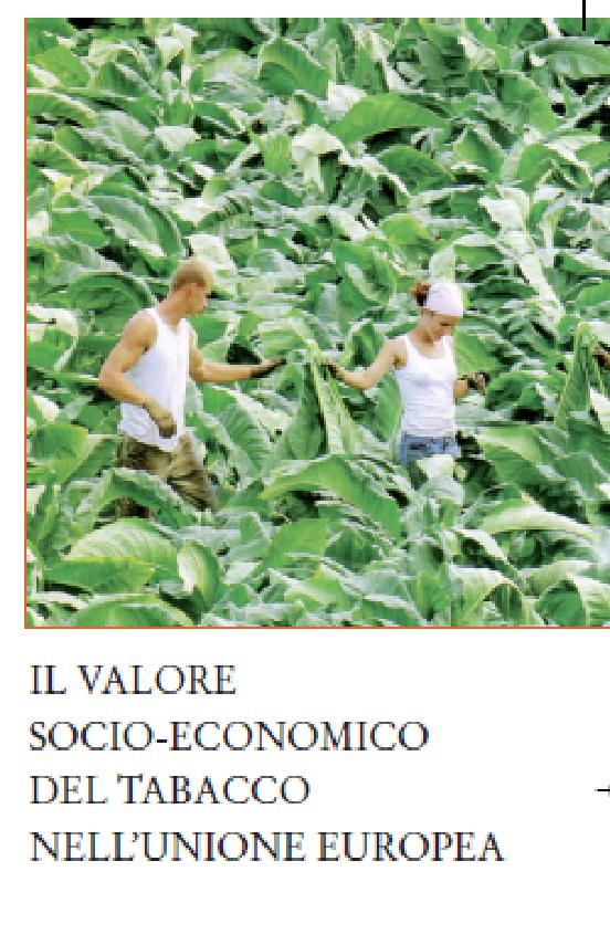 Copertina_Pubblicazione il valore del tabacco
